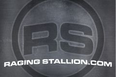 RagingStallion.com Relaunched