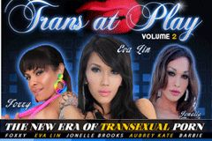 Trans 500 Releases 'Trans at Play 2'