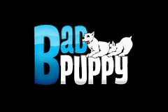 Badpuppy Relaunches Sites, Taps Belville as President