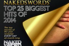NakedSword Counts Down Top 25 Movies of 2014