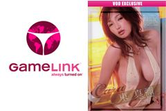 GameLink Offering Exclusive Japanese Porn Through April 23