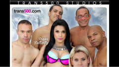 Pure Play, Trans500 Debut 'Transsexual Gangbang!'