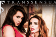 TransSensual Streets 'TS Lusty Latinas'