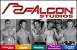 Falcon Purchased by 3Media Corp.