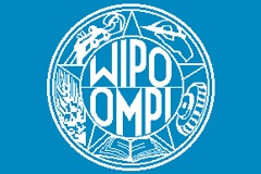 Domain Name Owner Must Give Up Site, WIPO Rules
