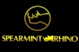 Ross Yamashita Promoted to Vice President of Marketing for Spearmint Rhino