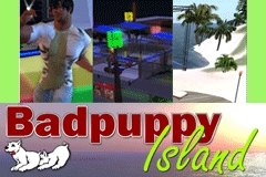 Badpuppy Island Opens in Second Life