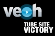 Veoh Porn Case Judge Rules in Favor of Tube Sites